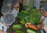 2º ano EFI conhece um pouco mais sobre os alimentos que são consumidos