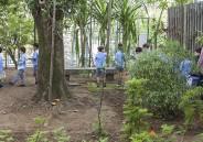 Turmas do 1º ano EFI exploram bosque do Colégio
