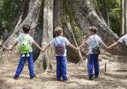 Meninos do 1º ano EFI visitam Jardim Botânico