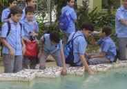 7º ano EFII participa de aula de campo no Jardim Botânico