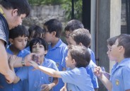 1º ano realiza transporte de alecrim