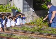1º ano EF retoma atividades na horta